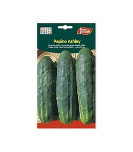 Semillas de Pepino Ashley de Eurogarden