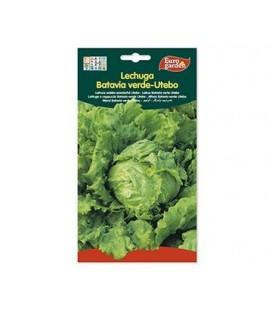 Semillas de Lechuga Batavia Verde-Utebo de Eurogarden