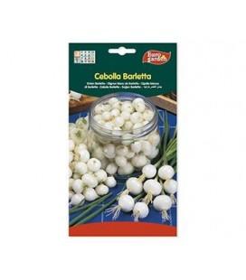 Semillas de Cebolla Barletta 5 g de Eurogarden