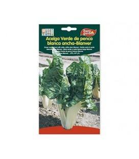 Semillas de Acelga Verde De Penca Blanca Ancha Blanver 10 g de Eurogarden