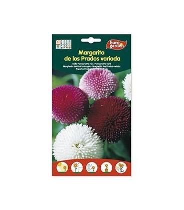 Semillas de Margarita De Los Prados Variada 430 mg de Eurogarden
