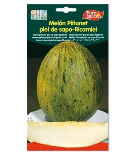 Semillas de Melón Piñonet piel de sapo-ricamiel de Eurogarden