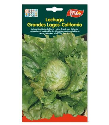 Lechuga Grandes Lagos-California 5gr de Eurogarden