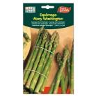 Semillas de Espárrago Mary Washington 5 g de Eurogarden