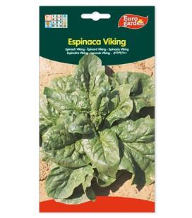 Semillas de Espinaca Viking 15 g de Eurogarden