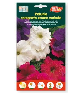 Semillas de Petunia compacta enana variada 500 mg de Eurogarden
