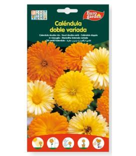 Semillas de Caléndula doble variada 6 g de Eurogarden