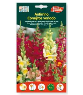 Semillas de Antirrino conejitos variado 1,5 g de Eurogarden