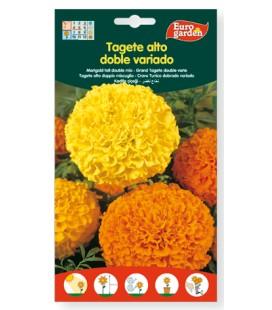 Semillas de Tagete doble variado 3 g de Eurogarden