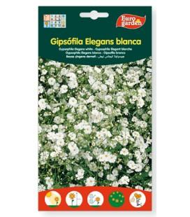 Semillas de Gipsófila Elegans blanca 6 g de Eurogarden