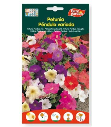Petunia Péndula variada 500 mg de eurogarden