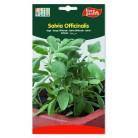Semillas de Salvia officinalis de Eurogarden