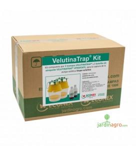 Velutinatrap Kit Econex