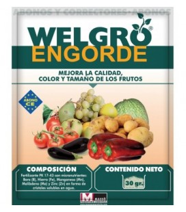 Welgro engorde 30 gr de Masso