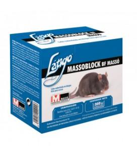 Latigo Massoblock 250 g de Masso