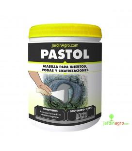 Pastol 1 Kg de Masso