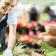 Como cultivar un huerto