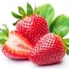El cultivo de fresas