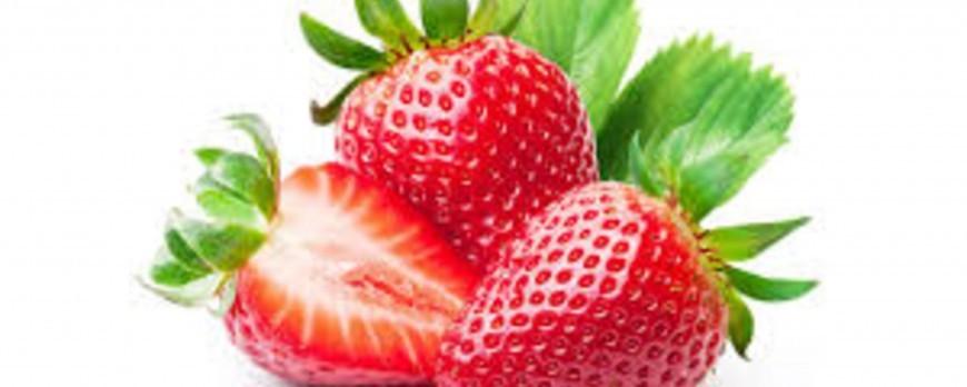Fresas: 5 aspectos básicos para una buena cosecha